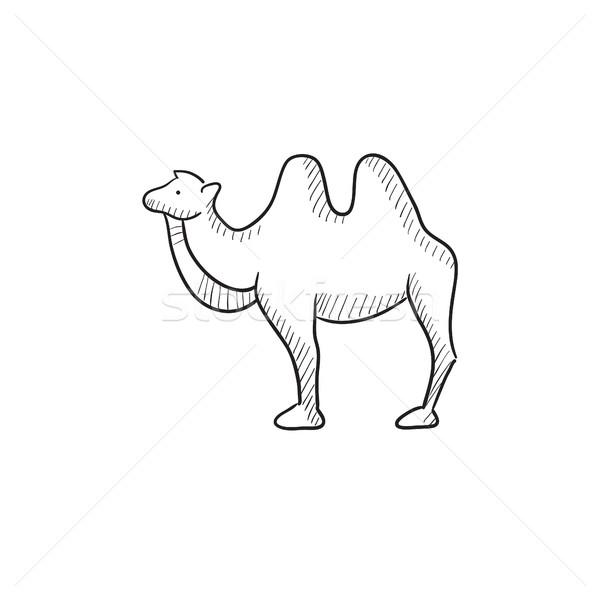 верблюда эскиз икона вектора изолированный рисованной Сток-фото © RAStudio
