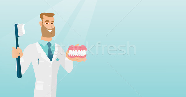 Dentist with a dental jaw model and a toothbrush. Stock photo © RAStudio