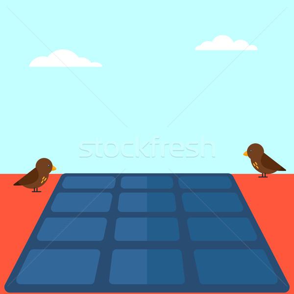 Zonnepaneel dak vector ontwerp illustratie vierkante Stockfoto © RAStudio