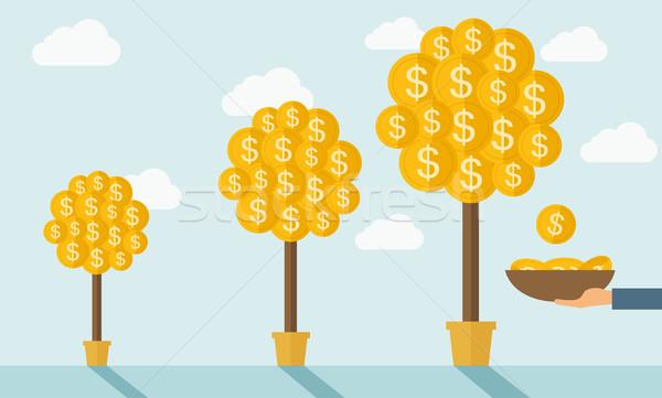 Három pénz fák lépcső növekvő dollár Stock fotó © RAStudio