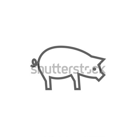 Pig line icon. Stock photo © RAStudio