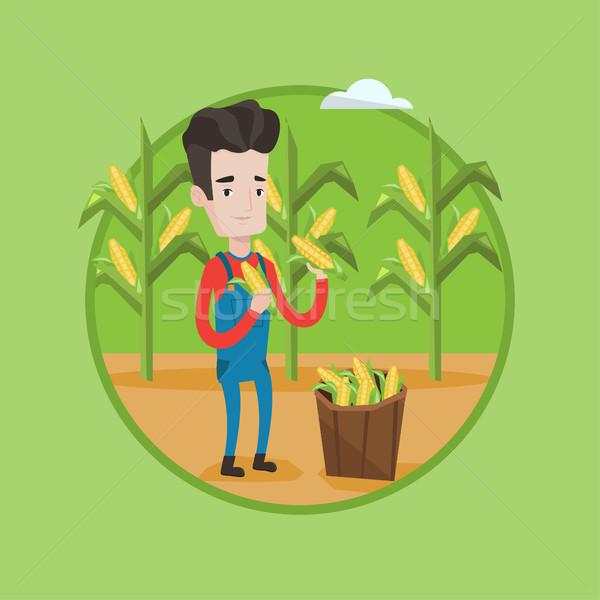ストックフォト: 農家 · トウモロコシ · 白人 · フィールド