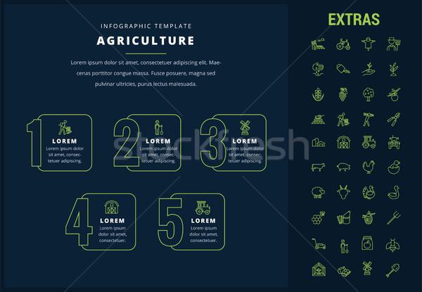 Agricultura modelo elementos ícones opções Foto stock © RAStudio