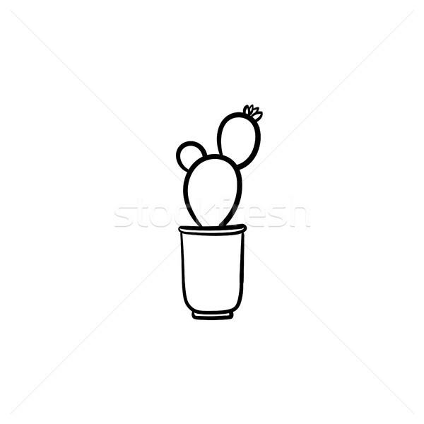 Kaktus puli szkic ikona wektora Zdjęcia stock © RAStudio
