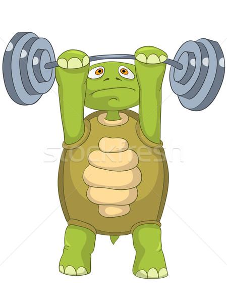 Funny Turtle. Gym. Stock photo © RAStudio