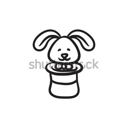 Conejo mago sombrero boceto icono vector Foto stock © RAStudio