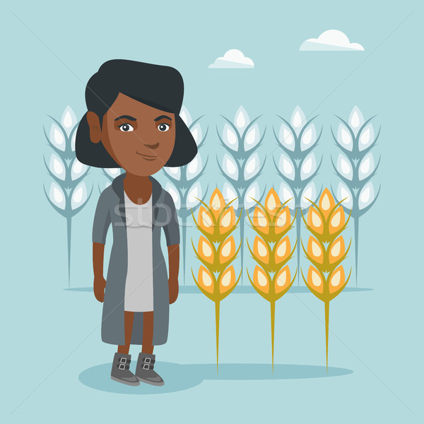Young african farmer standing in a wheat field. Stock photo © RAStudio