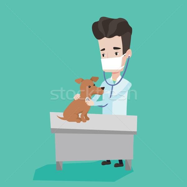 Veterinarian examining dog vector illustration. Stock photo © RAStudio