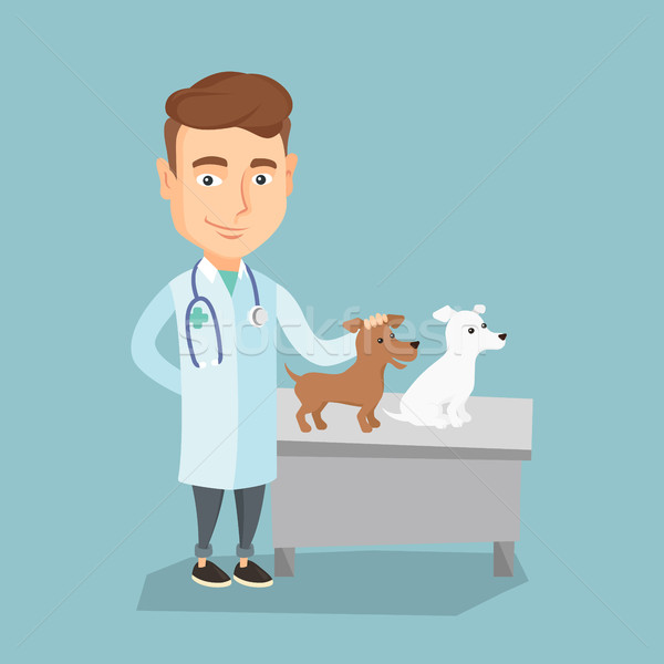Stock photo: Veterinarian examining dogs vector illustration.