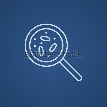 Microorganisms under magnifier line icon. Stock photo © RAStudio