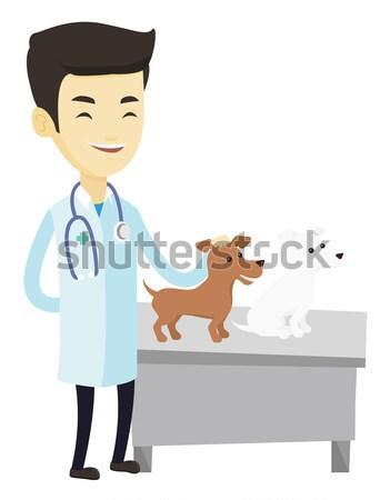 ветеринар собаки африканских стетоскоп больницу Сток-фото © RAStudio