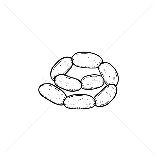 Sausage chain hand drawn sketch icon. Stock photo © RAStudio