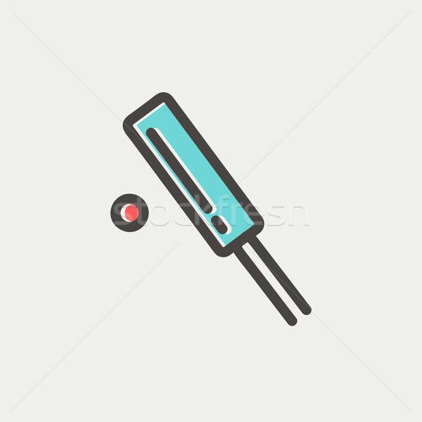 Cricket set game thin line icon Stock photo © RAStudio