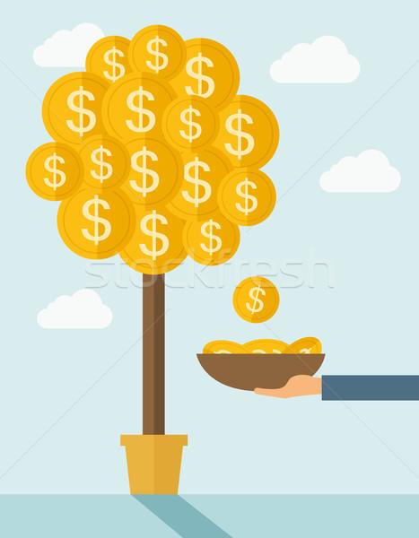Pénz növekvő fák kéz konténer dollár Stock fotó © RAStudio