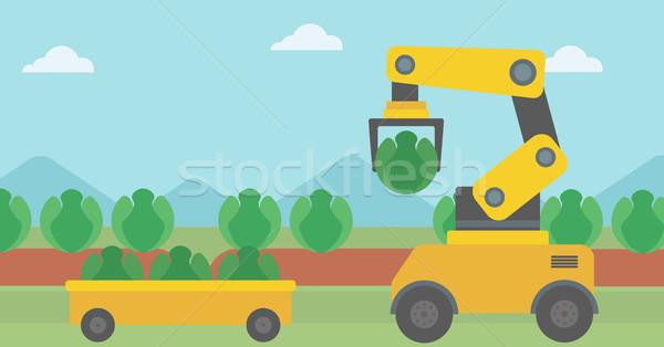 Robot kapusta rolniczy dziedzinie Zdjęcia stock © RAStudio