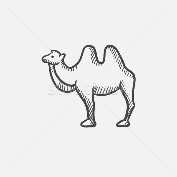 Camello boceto icono web móviles infografía Foto stock © RAStudio