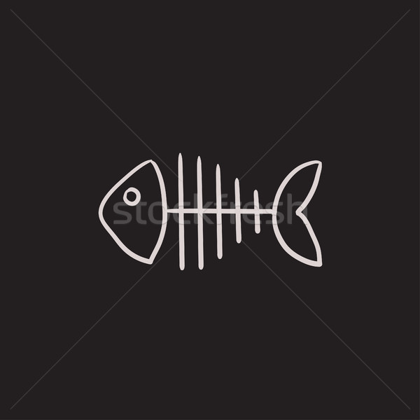 Fish skeleton sketch icon. Stock photo © RAStudio