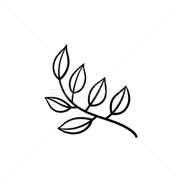 листьев филиала рисованной эскиз икона вектора Сток-фото © RAStudio