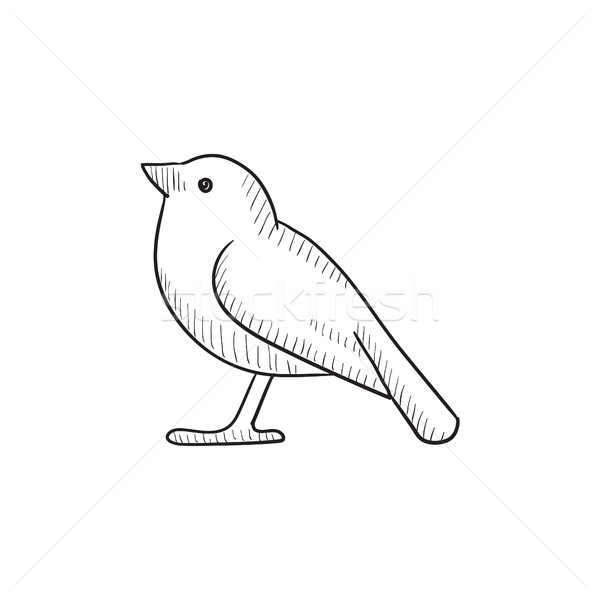 Bird sketch icon. Stock photo © RAStudio