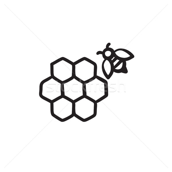 Honeycomb and bee sketch icon. Stock photo © RAStudio