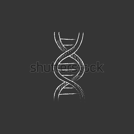 DNA. Drawn in chalk icon. Stock photo © RAStudio