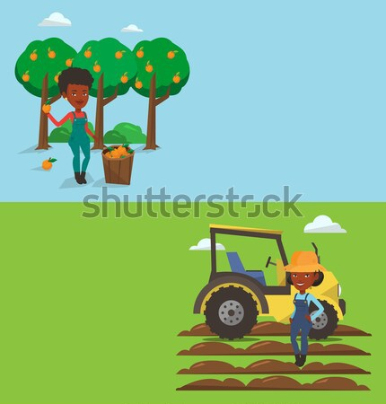 Agricultural banner with space for text. Stock photo © RAStudio