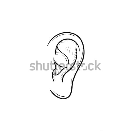 Human ear with sound waves hand drawn outline doodle icon. Stock photo © RAStudio