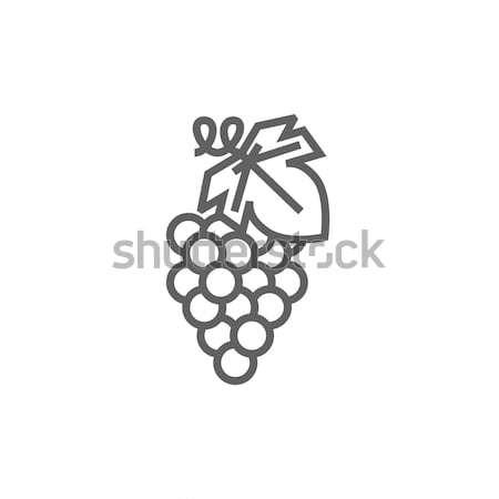 Grape line icon. Stock photo © RAStudio
