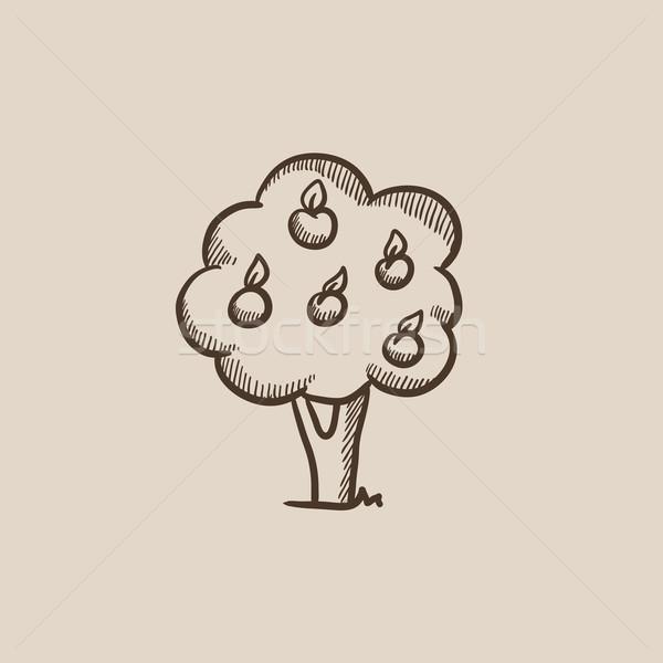 Gyümölcsfa rajz ikon háló mobil infografika Stock fotó © RAStudio