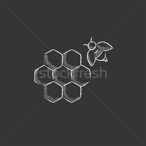 Honeycomb and bee. Drawn in chalk icon. Stock photo © RAStudio