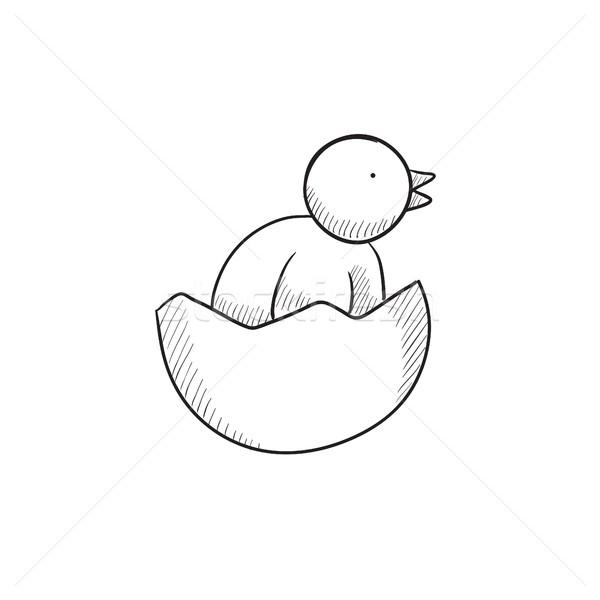 Chick peeking out of egg shell sketch icon. Stock photo © RAStudio
