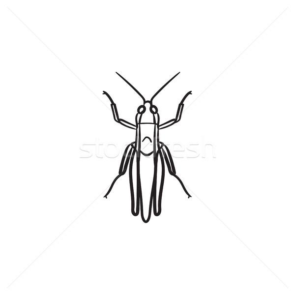 グラスホッパー 手描き スケッチ アイコン いたずら書き ストックフォト © RAStudio