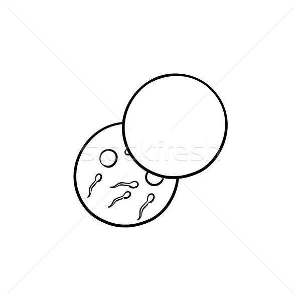 Oeufs plat dessinés à la main doodle icône Photo stock © RAStudio
