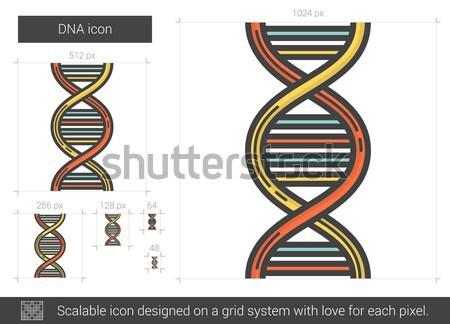ДНК линия икона вектора изолированный белый Сток-фото © RAStudio