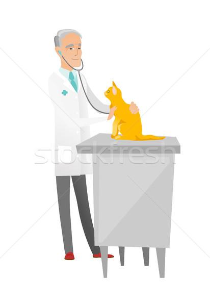 старший кавказский ветеринар кошки больницу Сток-фото © RAStudio