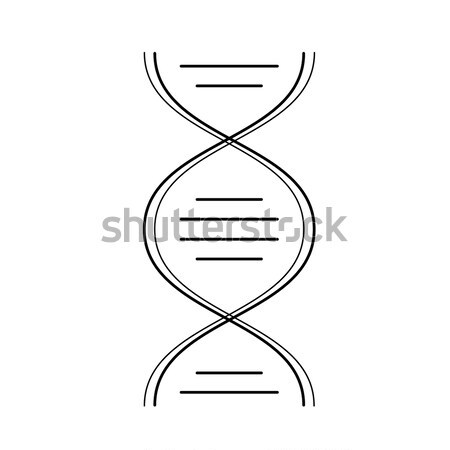 DNA molecule vector line icon. Stock photo © RAStudio