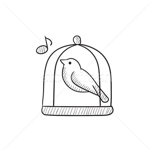 Bird singing in cage sketch icon. Stock photo © RAStudio