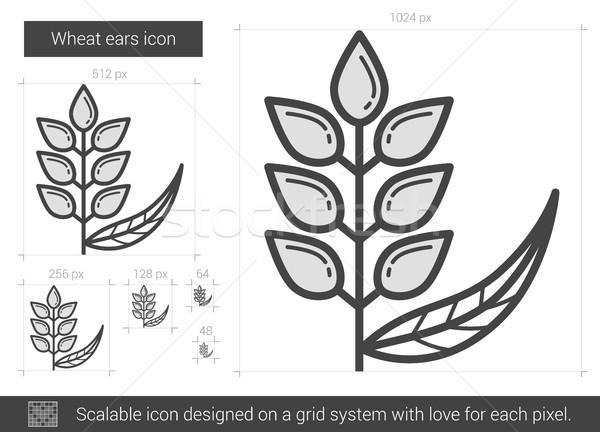 Wheat ears line icon. Stock photo © RAStudio
