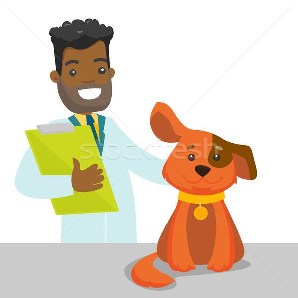 ветеринар собака врач больницу ветеринар Сток-фото © RAStudio