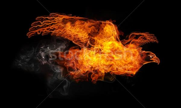 Yangın kartal yalıtılmış siyah bilgisayar grafikleri doğa Stok fotoğraf © RAStudio