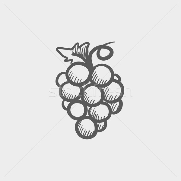 Bunch of grapes sketch icon Stock photo © RAStudio