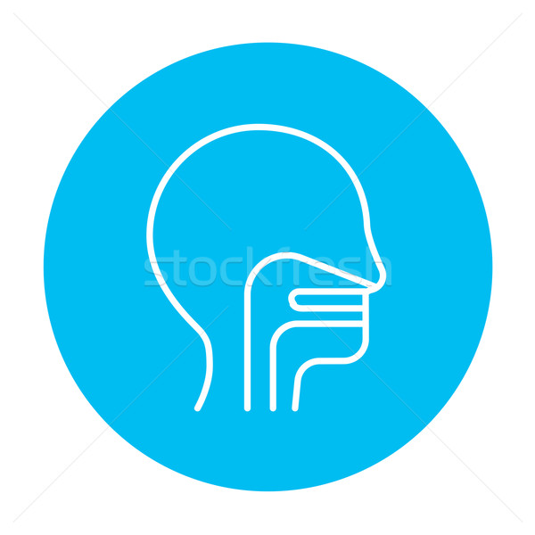 Human head with ear, nose, throat system line icon. Stock photo © RAStudio