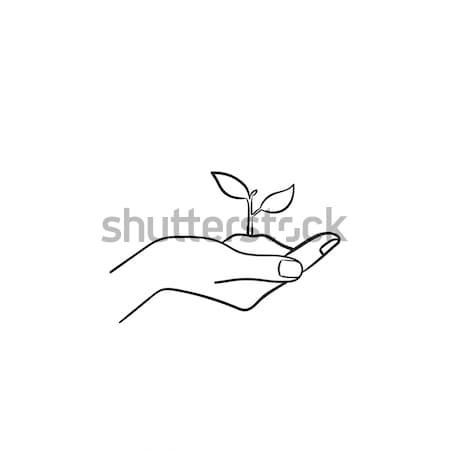 Menselijke hand spruit schets icon Stockfoto © RAStudio