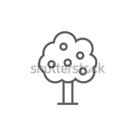 árvore frutífera linha ícone teia móvel Foto stock © RAStudio