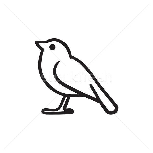Uccello sketch icona vettore isolato Foto d'archivio © RAStudio