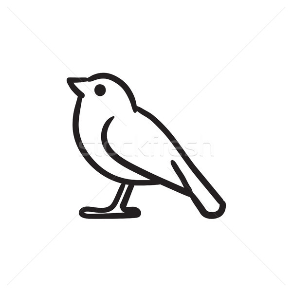 Bird sketch icon. Stock photo © RAStudio