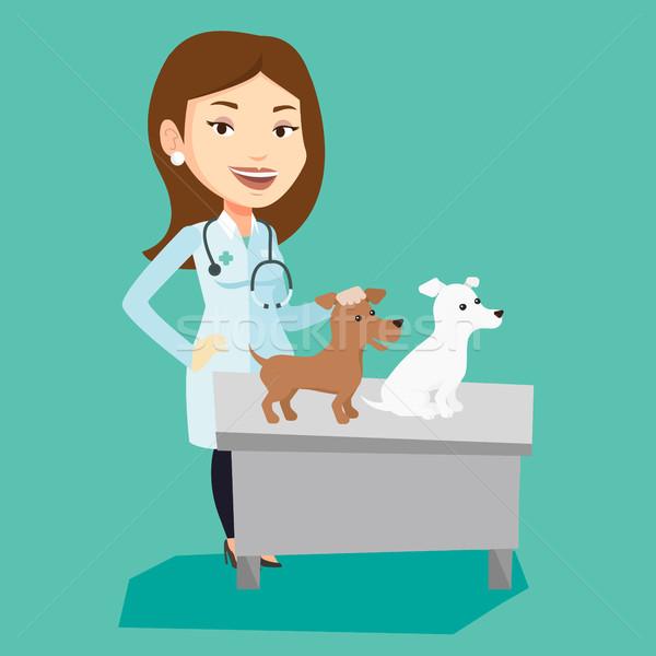 獣医 調べる 犬 小さな 白人 聴診器 ストックフォト © RAStudio