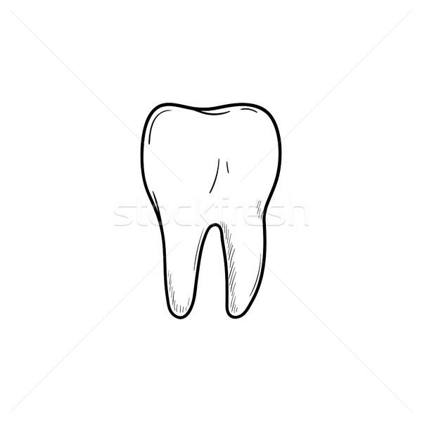Healthy tooth hand drawn outline doodle icon. Stock photo © RAStudio