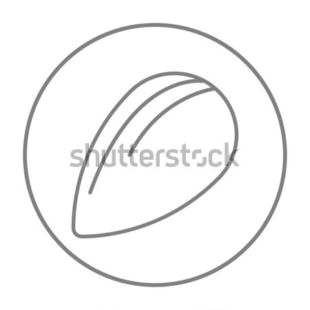 Almond line icon. Stock photo © RAStudio