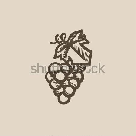 Grape sketch icon. Stock photo © RAStudio
